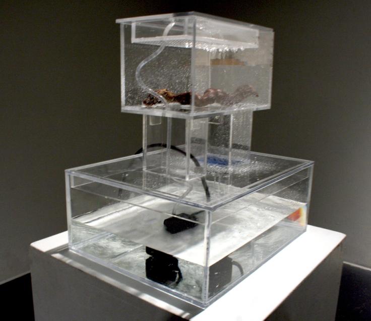 Decomposition Box